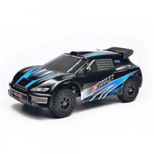 112 Proportional 24 GHz Four Wheel Drive Speed Model Car